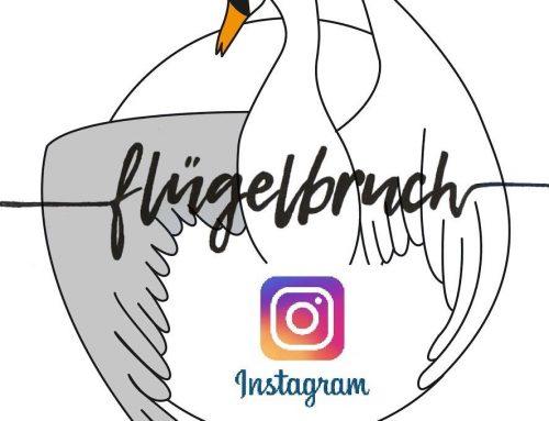 @fluegelbruch_ev